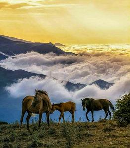 عکس/ منظرهای زیبا در مازندران