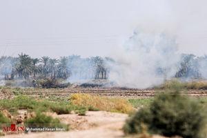 عکس/ آتش سوزی در تالاب هورالعظیم