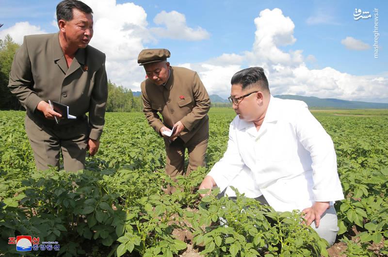 مردم کره شمالی کیم جونگ اون عکس کره شمالی زندگی در کره شمالی رهبر کره شمالی تحریم کره شمالی اخبار کره شمالی