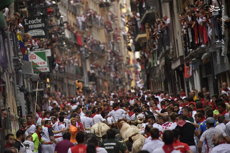 برگزاری جشنواره فرهنگ مردمی (فولکلور) «سانفرمین» در اسپانیا که البته بخش مشهور آن، رهاکردن گاوها در خیابان است.