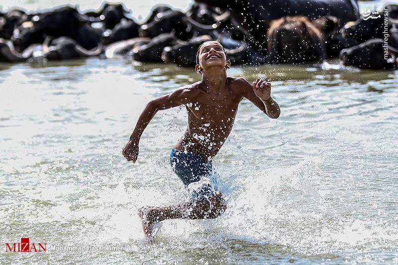 2293387 - تفریح تابستانه بچههای کارون