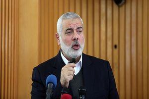افزایش بیسابقه حملات صهیونیستها به فلسطینیان