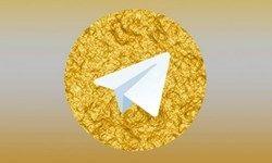 شوی رسانهای برای نسخههای فارسی تلگرام