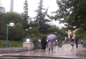 بارش باران و وزش باد در برخی از استان ها
