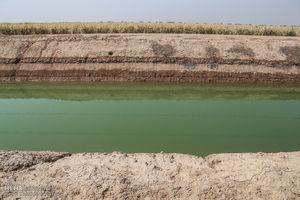 فیلم/ مزارع نیشکر دهخدا به زیر آب رفت