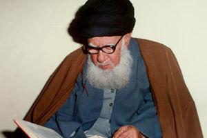 عکس/ دیدار آیت الله بهاءالدینی با شهید حسن باقری
