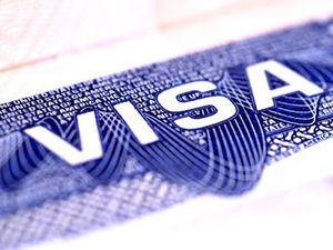 درآمد میلیاردی یک ژن خوب از صدور ویزا