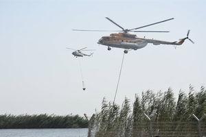 فیلم/ بالگردهای سپاه در حال خاموش کردن آتش هورالعظیم