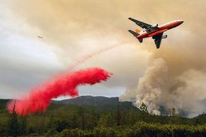 عکس/ آتش سوزی مهیب در کالیفرنیای آمریکا