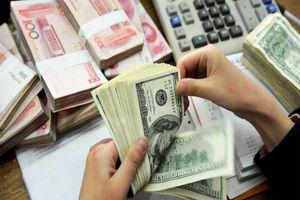 جزئیات عرضه ارز مسافرتی و دانشجویی در بانکها