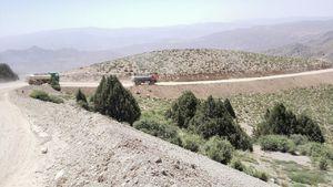 چه کسانی در «کوهخواری» بزرگ فیروزکوه مشارکت داشتند؟/ تخریب وسیع درختان کمیاب «اُرس» در ذخیرهگاه امینآباد +تصاویر