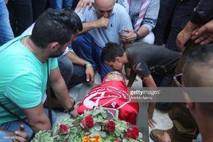 عکس/ وداع دردناک برادری با پیکر برادرش