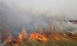 آخرین وضعیت مهار آتشسوزی در هورالعظیم