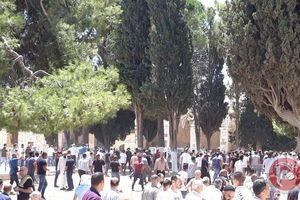 فیلم/ حمله به نمازگزاران فلسطینی در مسجدالاقصی