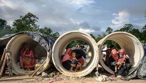 عکس/ در جستجوی پناهندگی