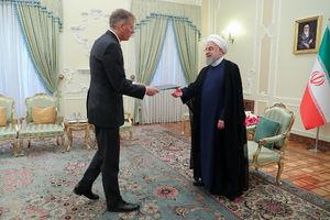 عکس/ دیدار سفیر جدید بریتانیا با روحانی
