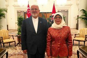 دیدار ظریف با رئیس جمهور سنگاپور