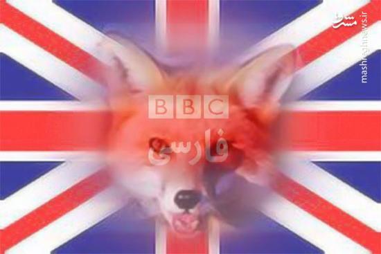 فیلم/ افشای ماهیت BBC روی آنتن زنده