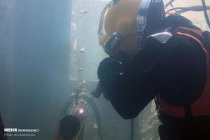 عکس/ جوشکاری زیر آب در مسابقات نظامی نوشهر