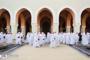 عکس/ حجاج در مسجد شجره