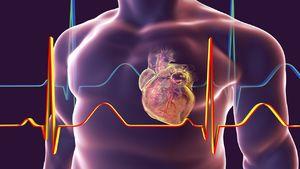 ۳ عاملی که موجب بزرگ شدن قلب میشوند