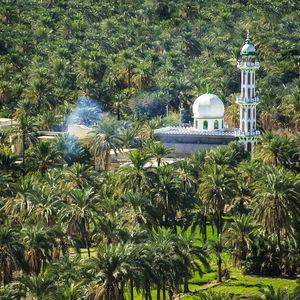 عکس/ شهری زیبا در سیستان و بلوچستان
