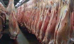 دستگیری احتکارکنندگان ۹.۵ تن گوشت مرغ و گاو