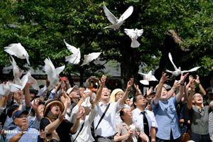عکس/ ادای احترام ژاپنی ها به قربانیان جنگ جهانی دوم