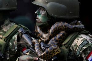 تصاویر برگزیده جهان در هفته چهارم مرداد