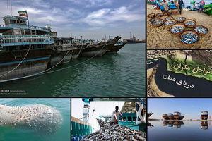 کجزئیاتی از صیادی چینیها در دریای عمان