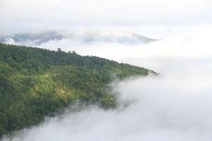 عکس/ دریای ابر در ارتفاعات فیلبند مازندران