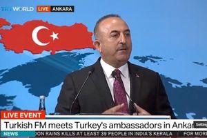 چاوشاوغلو: ترکیه بیدی نیست که از این بادها بلرزد