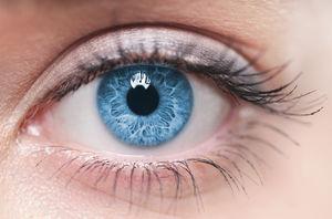 سلامت نمایه چشم