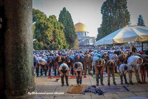 حضور گسترده فلسطینیان در نماز عید قربان