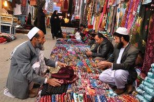 فیلم/ آداب عید قربان در سیستان و بلوچستان