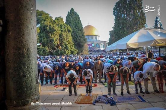 عکس/ حضور گسترده فلسطینیان در نماز عید قربان
