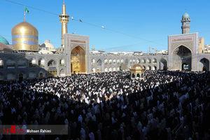 عکس/ اقامه نماز باشکوه عید قربان در حرم رضوی