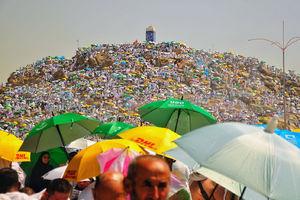 تصاویر برگزیده جهان در هفته آخر مرداد