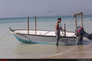 عکس/ میهمانان تابستانی در سواحل قشم