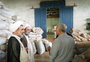 بازدید امام جمعه رشت از کارخانه چای فومن +عکس
