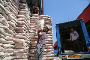 عکس/ احتکار برنج در انبار سنگ!