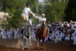 عکس/ نمایش اسب ها در عمان