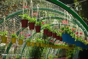 عکس/ افتتاح نمایشگاه گل و گیاه کرج