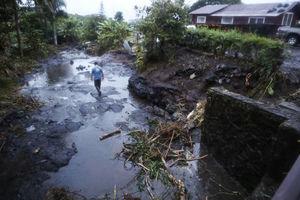 عکس/ خسارت طوفان مهیب در هاوایی