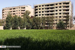 برنجکاری در شهر اصفهان با وجود مواجهه استان