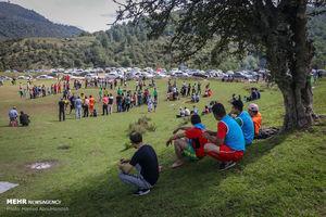 عکس/ لیگ گلکوچک در دل جنگلهای مازندران!