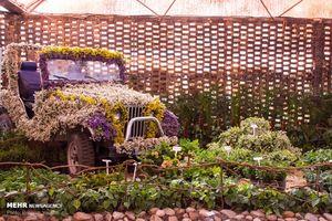 جشنواره گل محلات