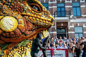 رژه گل های غول پیکر در هلند