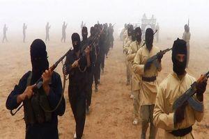 احتمال تشکیل یک گروه تروریستی جدید با ائتلاف القاعده و داعش