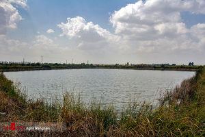 کاهش 35درصدی حجم آبهای سطحی کشور